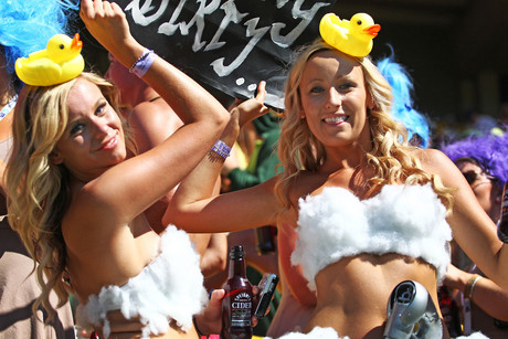 Fans enjoying the Wellington Sevens (Photosport)
