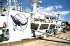 The Sea Shepherd vessel Sam Simon