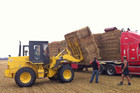 Canterbury farmers loading straw to be sent to the North Island (Photo: Hamish Clark/3 News)