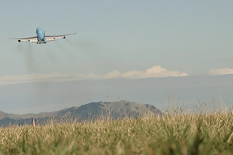 The grass has been trialled at New Zealand airports since 2010