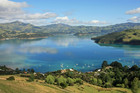 Akaroa Bay (file)