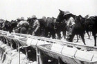 More than 12,000 horses were sent to World War I