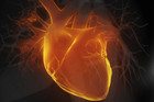DNA therapy is helping hearts survive