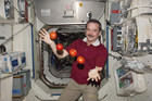 Commander Chris Hadfield juggles tomatoes in space (Reuters file)