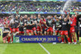 Toulon celebrate their win (Reuters)