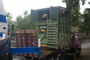 Nakuru the giraffe arrives at new home