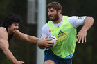 Gold Coast's David Taylor can play this weekend (AAP)