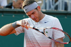 Seventh-ranked Juan Martin del Potro (Reuters)