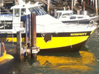 Ferry Serenity has a hole in the hull after colliding with a water taxi (Photo: RadioLIVE)
