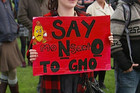The marches were part of a worldwide protest action against Monsanto