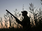 More than 40,000 hunters are expected to head out to bag some of the country's estimated 4.5 million mallards