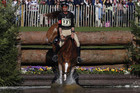 ndrew Nicholson is chasing equestrian's lucrative Grand Slam with Nereo (Reuters)