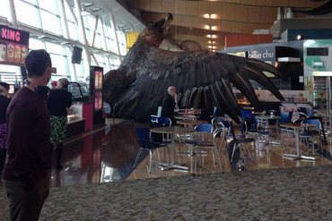 Weta Workshop's statue falls at Wellington Airport (Karamea M Swindells-Wallace)