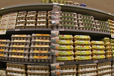 How do you like your eggs? New Zealand supermarket shelves offer tremendous choice