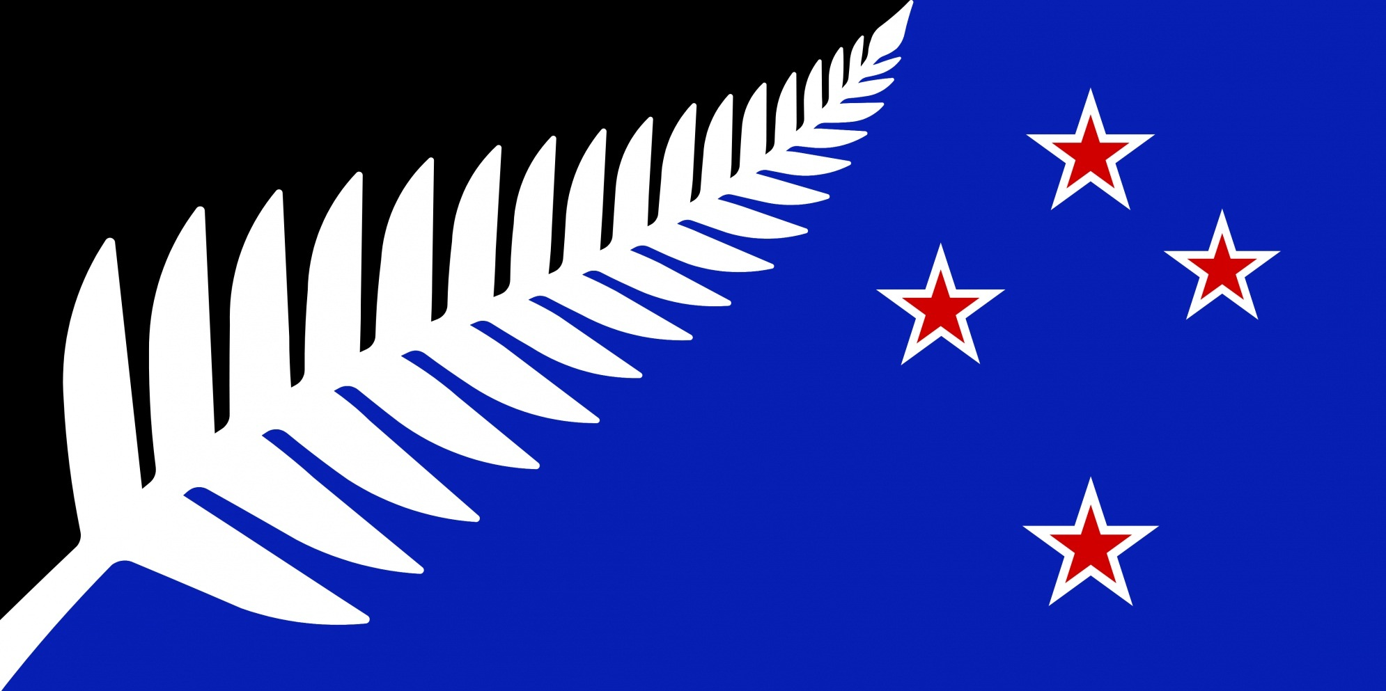 Image of the silver fern - black white and blue version.