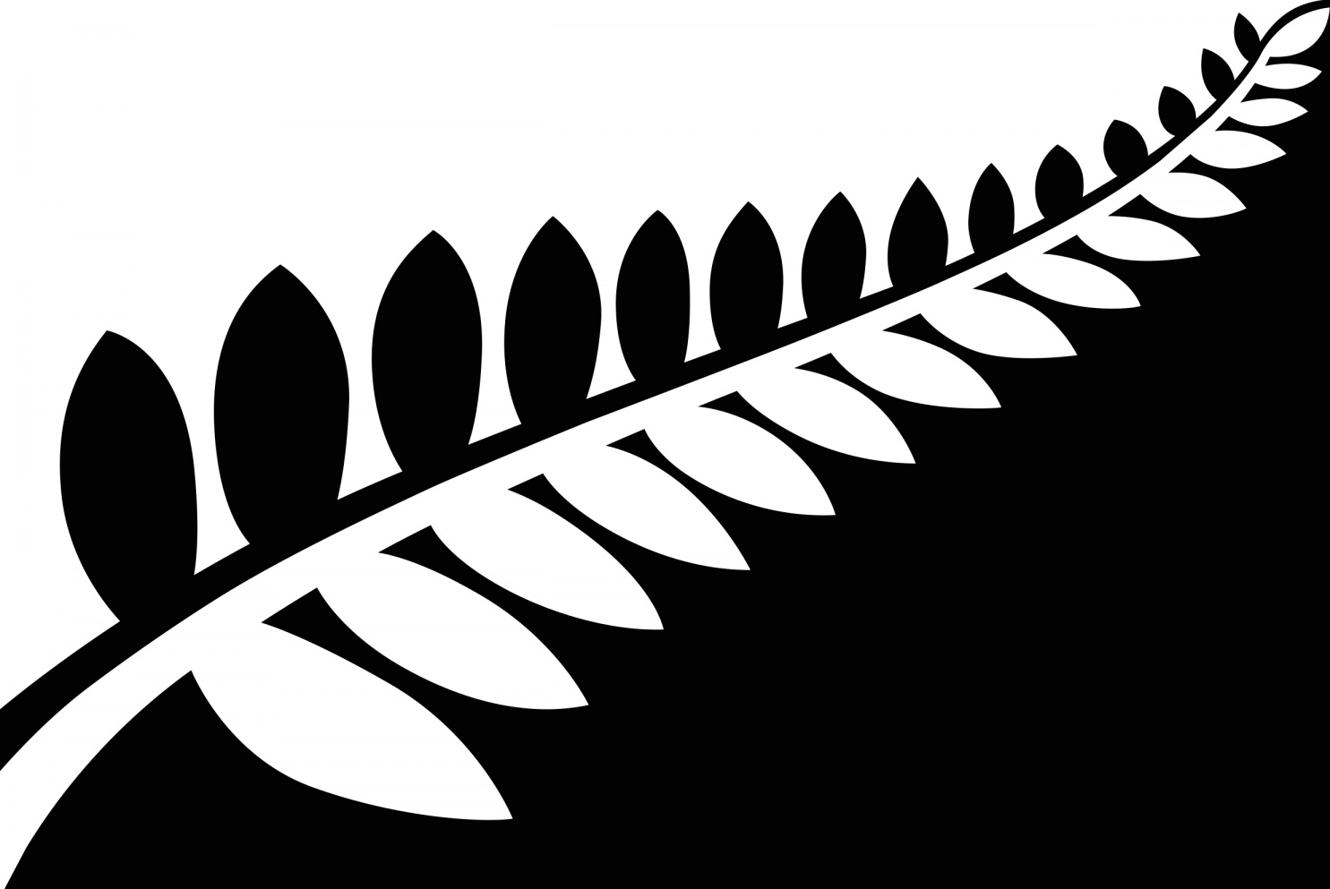 Image of the silver fern flag - black and white version.
